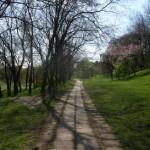 parcul_tineretului5